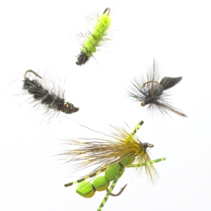 Turrall terrestrial fly patterns