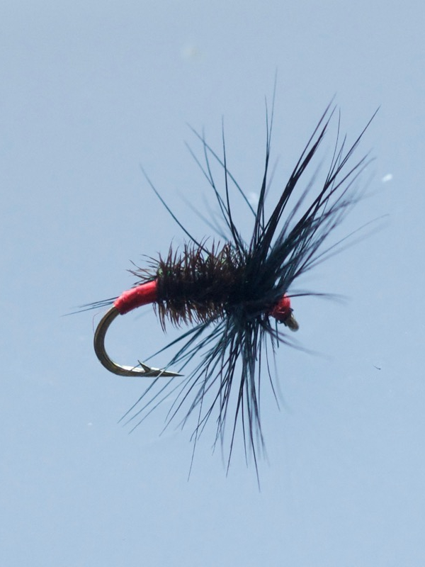 Flies for coarse fish Turrall