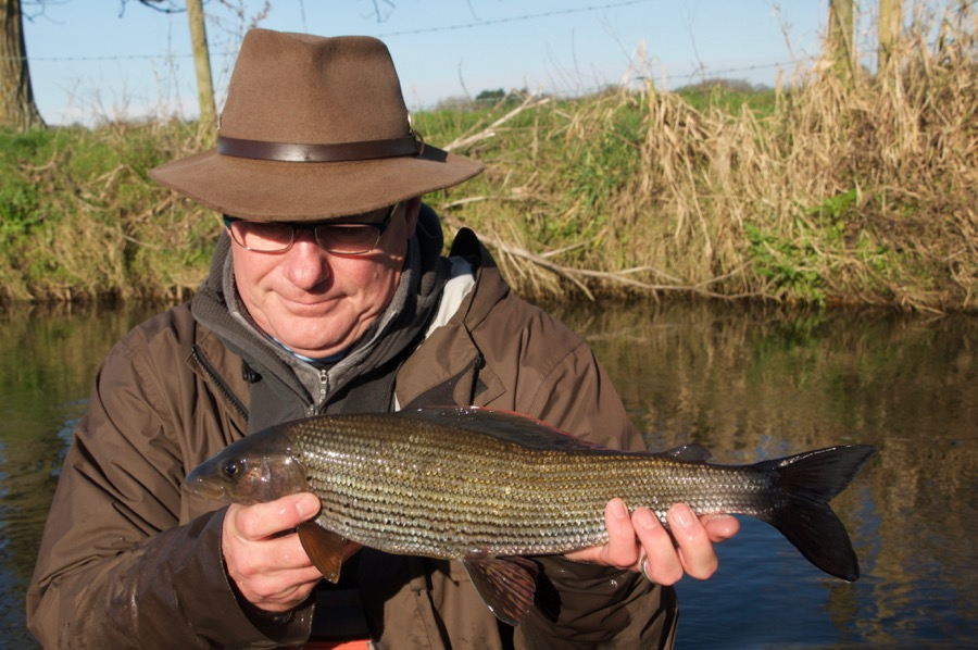 River Frome Specimen Grayling