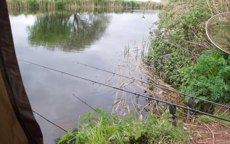 Exeter canal carp fishing