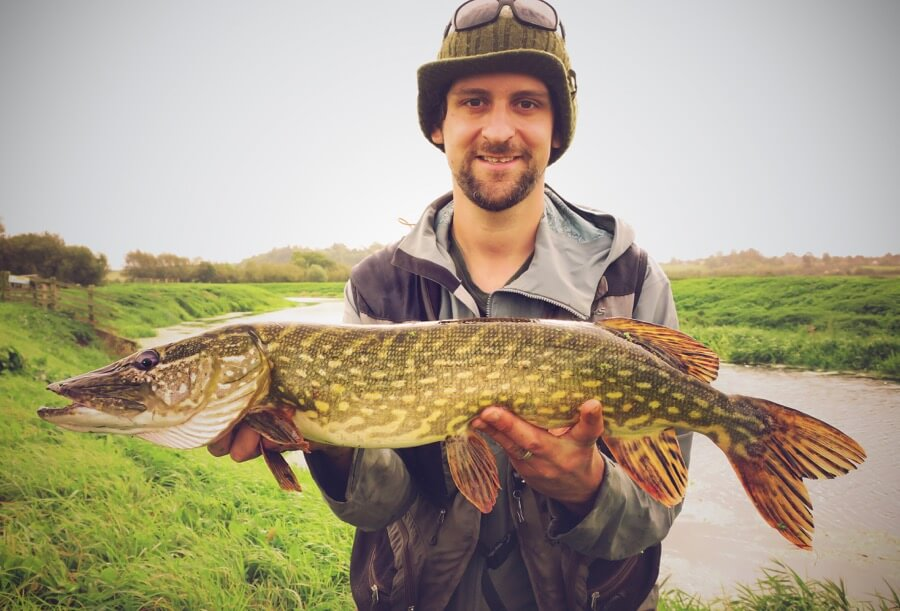 Pike fly fishing Somerset Levels