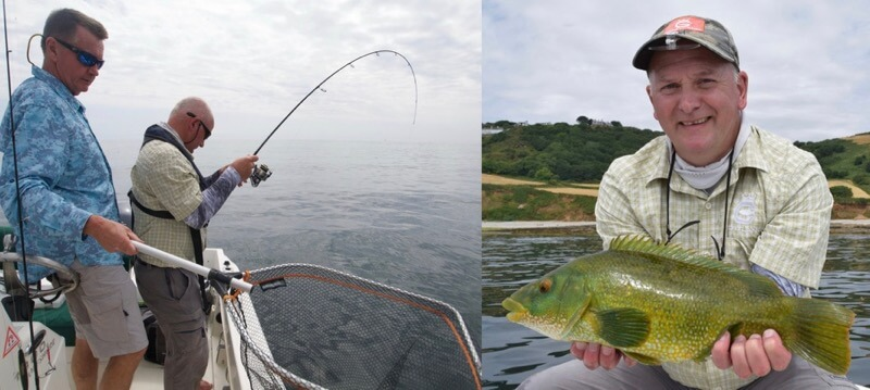 lure fishing for wrasse Devon UK