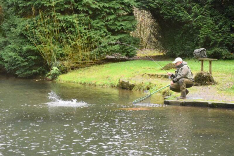 Blakewell fishery trout day ticket fishing