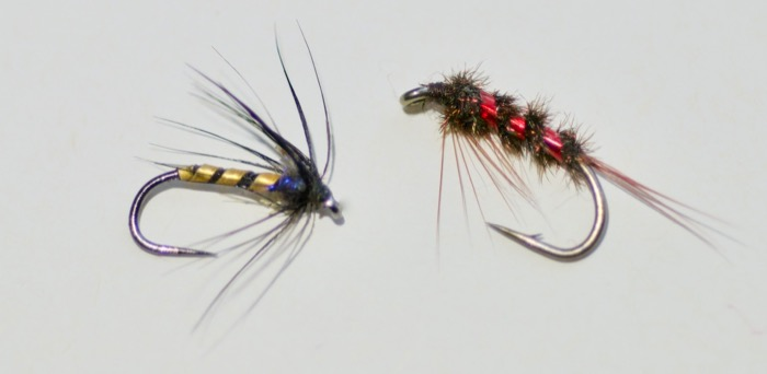 fly patterns for coloured water canal rudd roach