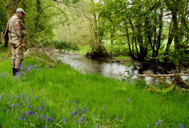 River Exe Hadeo Fly Fishing Devon Somerset
