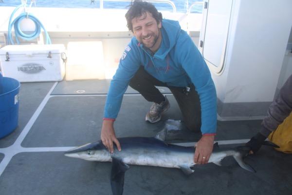 Shark Fishing Looe Cornwall