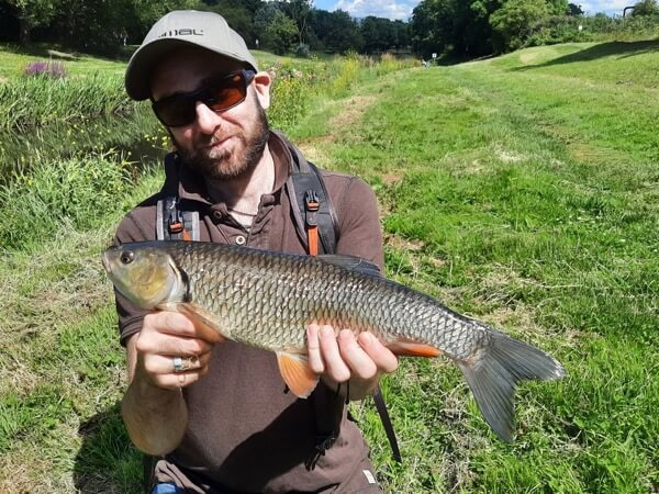 Fly caught chub