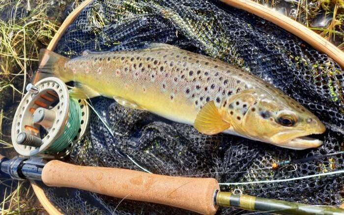 Guided fly fishing Lessons Roadford Lake Devon