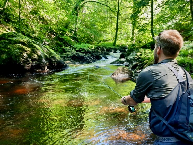 Pocket water fly fishing